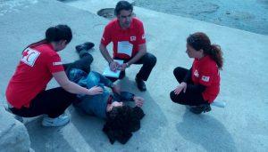 """Međunarodni trening """"Psihosocijalna podrška u kriznim situacijama"""""""